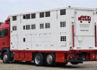 Scania G440 * Bydlarka/Do Przewozu Żywca 6,80m